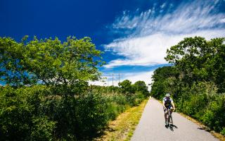 Photo of Cape Cod Rail Trail